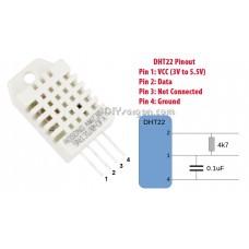 Humidity & Temperature Sensor (DHT22)